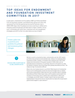 Top Ideas for E&F Investment Committees in 2017